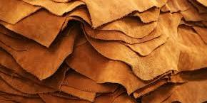 EGYPT : Trade Minister meets with producers, exporters to discusses boosting Egypt's leather industry