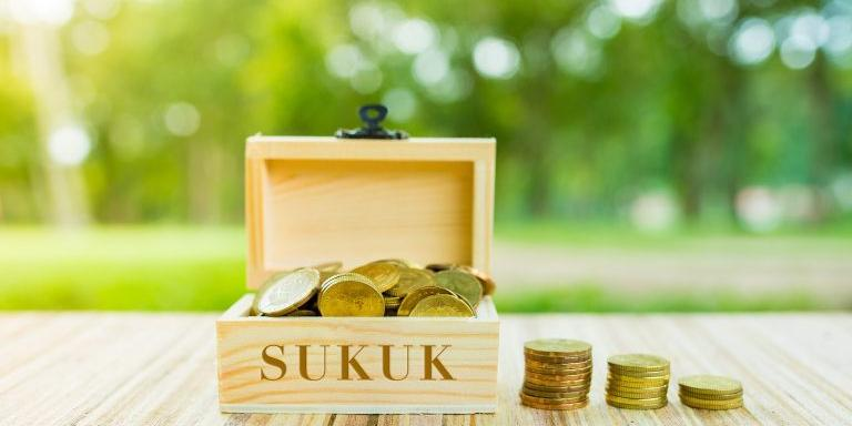 Egypt : Sarwa Capital, Amer Group to conduct their sukuk offerings before 2020 end