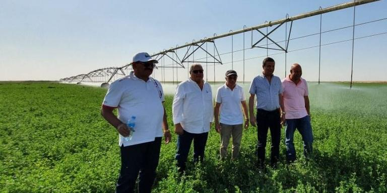 Egypt : ABE Chairperson explores finance schemes for agricultural projects in Toshka